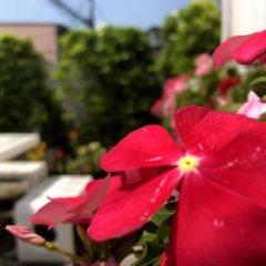 Отель Little Bird Phuket Таиланд, Пхукет - отзывы, цены и фото номеров - забронировать отель Little Bird Phuket онлайн