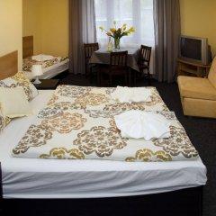 Отель Penzion Dolícek Хеб комната для гостей фото 3