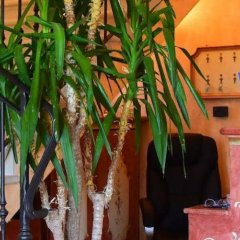Отель Agriturismo Fondo San Benedetto Мазера-ди-Падова интерьер отеля