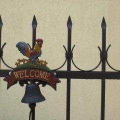 Отель Guest House Kiwi Болгария, Генерал-Кантраджиево - отзывы, цены и фото номеров - забронировать отель Guest House Kiwi онлайн с домашними животными