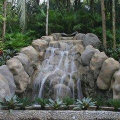 Отель Gaia Hotel And Reserve - Adults Only Коста-Рика, Кепос - отзывы, цены и фото номеров - забронировать отель Gaia Hotel And Reserve - Adults Only онлайн фото 3