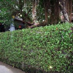 Отель Plum Tree Homestay Вьетнам, Хойан - отзывы, цены и фото номеров - забронировать отель Plum Tree Homestay онлайн фото 2