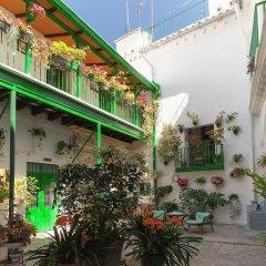 Отель Apartamentos Jerez Испания, Херес-де-ла-Фронтера - отзывы, цены и фото номеров - забронировать отель Apartamentos Jerez онлайн фото 19