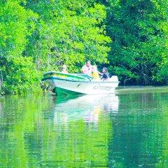 Отель Lagoon Garden Hotel Шри-Ланка, Берувела - отзывы, цены и фото номеров - забронировать отель Lagoon Garden Hotel онлайн приотельная территория фото 2