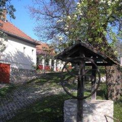 Отель Guest house Magyar Route 66 Венгрия, Силвашварад - отзывы, цены и фото номеров - забронировать отель Guest house Magyar Route 66 онлайн фото 13