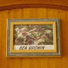 Ericeira Chill Hill Hostel & Private Rooms - Sea Food интерьер отеля фото 2