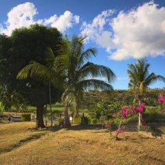 Отель The Beehive Fiji фото 10