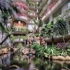 Shangri La Hotel Singapore Сингапур фото 4