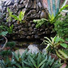 Отель Altheas Place Palawan Филиппины, Пуэрто-Принцеса - отзывы, цены и фото номеров - забронировать отель Altheas Place Palawan онлайн фото 8