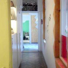 Отель Nattydog Hostel Венгрия, Будапешт - отзывы, цены и фото номеров - забронировать отель Nattydog Hostel онлайн комната для гостей фото 2