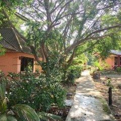 Отель Lamai Chalet Таиланд, Самуи - отзывы, цены и фото номеров - забронировать отель Lamai Chalet онлайн фото 6