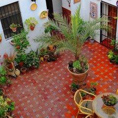 Отель Rincon de las Nieves с домашними животными