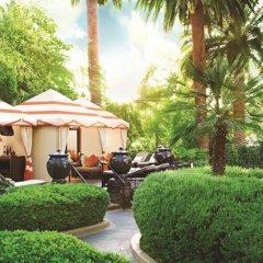 Отель The Mirage США, Лас-Вегас - 10 отзывов об отеле, цены и фото номеров - забронировать отель The Mirage онлайн фото 7