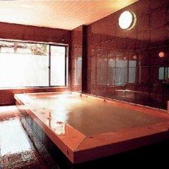Отель Hodakaso Yamano Iori Япония, Такаяма - отзывы, цены и фото номеров - забронировать отель Hodakaso Yamano Iori онлайн бассейн фото 2