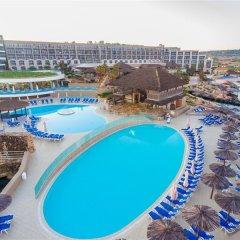 Отель Ramla Bay Resort с домашними животными