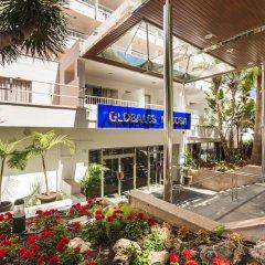 Отель Globales Mimosa Испания, Пальманова - отзывы, цены и фото номеров - забронировать отель Globales Mimosa онлайн фото 6