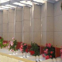 Отель Ivana Guesthouse Черногория, Тиват - отзывы, цены и фото номеров - забронировать отель Ivana Guesthouse онлайн балкон