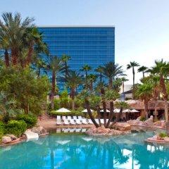 Hard Rock Hotel And Casino Лас-Вегас бассейн