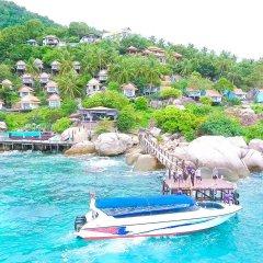 Отель Koh Tao Hillside Resort Таиланд, Остров Тау - отзывы, цены и фото номеров - забронировать отель Koh Tao Hillside Resort онлайн приотельная территория