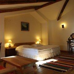 Отель Gela & Spa Болгария, Чепеларе - отзывы, цены и фото номеров - забронировать отель Gela & Spa онлайн фото 4