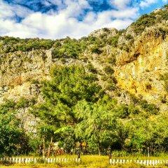 Гостевой Дом Dionysos Lodge фото 7