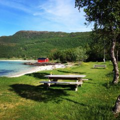 Отель Tjeldsundbrua Camping бассейн