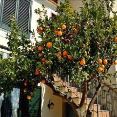 Отель Casa Annalisa Италия, Понтоне - отзывы, цены и фото номеров - забронировать отель Casa Annalisa онлайн балкон