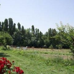 Отель Agriturismo Case Mori Римини приотельная территория фото 2