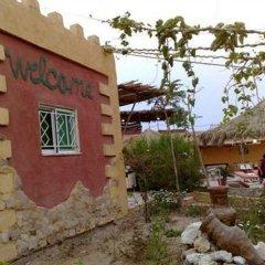 Отель Bedouin Moon Village фото 8