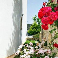 Villa Koru Турция, Патара - отзывы, цены и фото номеров - забронировать отель Villa Koru онлайн помещение для мероприятий