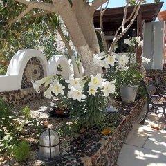 Отель Black Sand Hotel Греция, Остров Санторини - отзывы, цены и фото номеров - забронировать отель Black Sand Hotel онлайн фото 8
