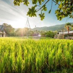 Отель Naina Resort & Spa Таиланд, Пхукет - 3 отзыва об отеле, цены и фото номеров - забронировать отель Naina Resort & Spa онлайн фото 4