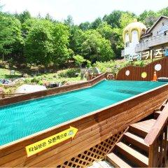 Отель KOREA QUALITY Elf Spa Resort Hotel Южная Корея, Пхёнчан - отзывы, цены и фото номеров - забронировать отель KOREA QUALITY Elf Spa Resort Hotel онлайн с домашними животными