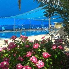 Tooly Eden Inn Израиль, Зихрон-Яаков - отзывы, цены и фото номеров - забронировать отель Tooly Eden Inn онлайн бассейн
