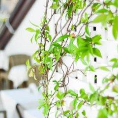 Отель Residenza Luce Италия, Амальфи - отзывы, цены и фото номеров - забронировать отель Residenza Luce онлайн с домашними животными
