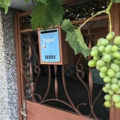 Отель Kozarov House Болгария, Свети Влас - отзывы, цены и фото номеров - забронировать отель Kozarov House онлайн парковка
