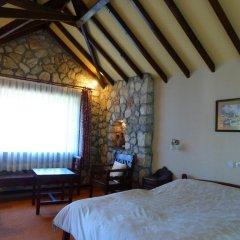 Отель Mountain Lodge комната для гостей фото 2