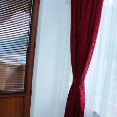 Отель Family Hotel Aleks Болгария, Ардино - отзывы, цены и фото номеров - забронировать отель Family Hotel Aleks онлайн удобства в номере фото 2