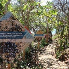 Отель Isla Natura Beach Huatulco фото 4