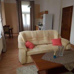 Отель Villa Sofia Apartments Чехия, Карловы Вары - отзывы, цены и фото номеров - забронировать отель Villa Sofia Apartments онлайн комната для гостей фото 5