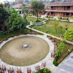 Отель Jungle Safari Lodge Непал, Саураха - отзывы, цены и фото номеров - забронировать отель Jungle Safari Lodge онлайн