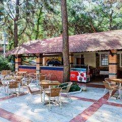 Fun&Sun Club Saphire Турция, Кемер - отзывы, цены и фото номеров - забронировать отель Fun&Sun Club Saphire онлайн фото 6