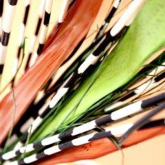 Гостиница Хостел Сочи в Сочи 1 отзыв об отеле, цены и фото номеров - забронировать гостиницу Хостел Сочи онлайн спортивное сооружение