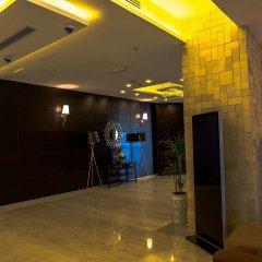 Olive Tree Hotel Amman интерьер отеля фото 2