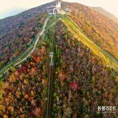 Отель Yongpyong Resort Dragon Valley Hotel Южная Корея, Пхёнчан - отзывы, цены и фото номеров - забронировать отель Yongpyong Resort Dragon Valley Hotel онлайн