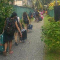 Отель Green Garden Guest House Шри-Ланка, Берувела - 1 отзыв об отеле, цены и фото номеров - забронировать отель Green Garden Guest House онлайн с домашними животными