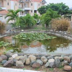 Отель The Oasis at Marley Manor Ямайка, Кингстон - отзывы, цены и фото номеров - забронировать отель The Oasis at Marley Manor онлайн фото 21