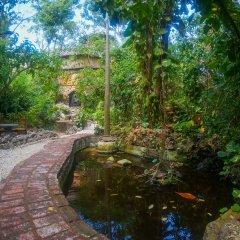 Отель Great Huts Ямайка, Порт Антонио - отзывы, цены и фото номеров - забронировать отель Great Huts онлайн