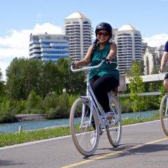 Отель Arts Канада, Калгари - отзывы, цены и фото номеров - забронировать отель Arts онлайн спортивное сооружение