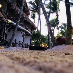 Отель Beachfront Hotel La Palapa - Adults Only Мексика, Остров Ольбокс - отзывы, цены и фото номеров - забронировать отель Beachfront Hotel La Palapa - Adults Only онлайн помещение для мероприятий